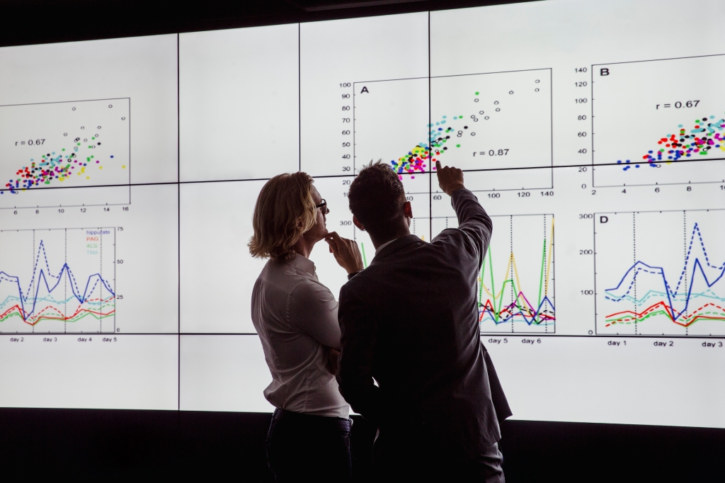 How to build a data-driven culture
